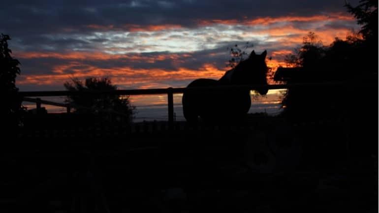 Sonnenuntergang Altmark